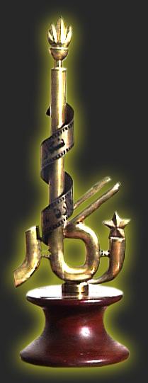 nigar-award