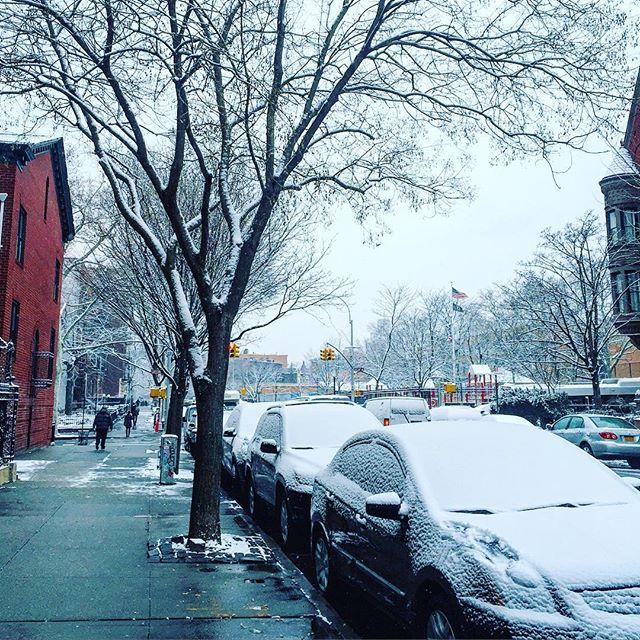 brooklyn-winterstorm