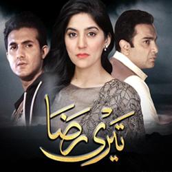 Teri Raza –  ARY Digital Exclusive Drama